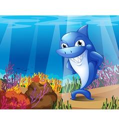 A scary blue shark under the sea vector