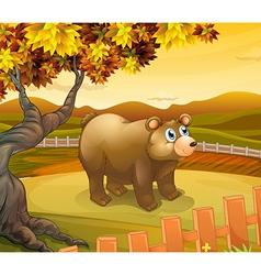 A big bear inside the fence vector