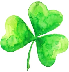 Green watercolor painted clover vector