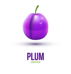 Realistic plum isolated on white background vector