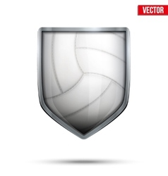 Bright shield in the volleyball ball inside vector