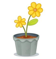 Yellow flower pot vector