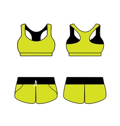 Womens sport underwear bra and shorts vector