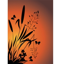 Wildflowers in the evening vector