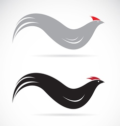 Chicken vector