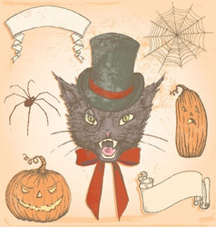 Hand drawn vintage halloween creepy cat set vector