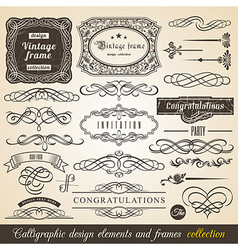 Calligraphic element border vector