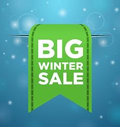 Winter sale big green ticket vector