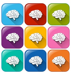 Buttons with brain organ vector
