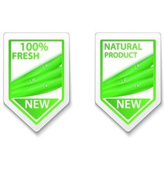 Fresh natural labels and stickers vector