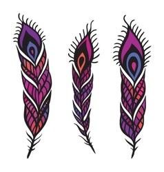 Peacock feather set vector