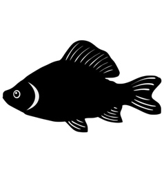 Silhouette of crucian vector