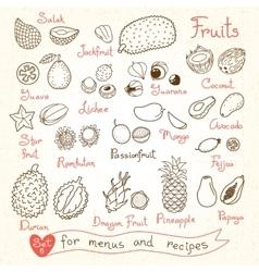 Set drawings of fruit for design menus recipes vector
