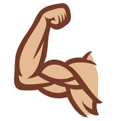 Biceps - arm showing muscles vector