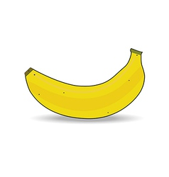 Ripe banana isolated vector