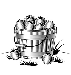 Retro bucket of tomatoes black and white vector