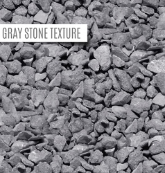 Seamless stone texture vector