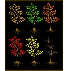 Trees on a black background vector