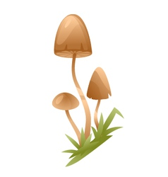 Psychedelic mushrooms vector