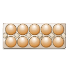 Eggs in a packet vector