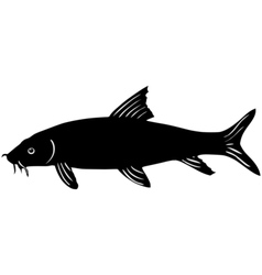 Silhouette of barbel vector