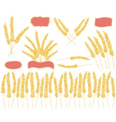 Wheat doodles colored vector