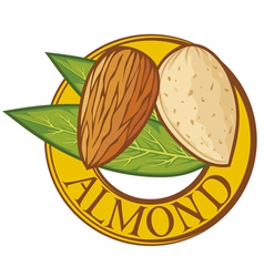 Almond with leaves label vector