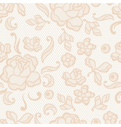 Vintage lace background ornamental flowers texture vector