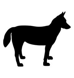 Alaskan husky silhouette vector