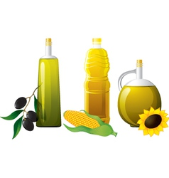 Set of bottle oil vector