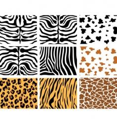 Animal skins vector