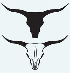 Skull of a bull vector
