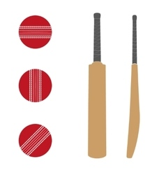 Traditional wood cricket bats and balls vector