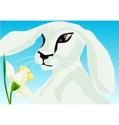 Animal springtime vector