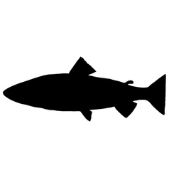 Trout silhouette vector