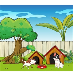 Two dogs inside the fence vector