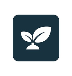 Plant icon rounded squares button vector
