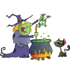 Crazy witch with black cat holding a frog vector