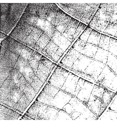 Background leaf overlay vector