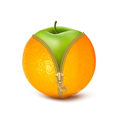 Unzipped orange with green apple fruit and diet vector