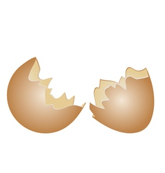 Egg shell vector