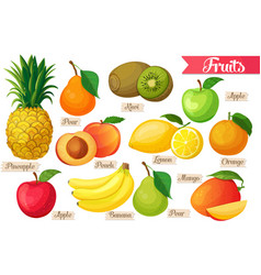 Icons of fruit vector