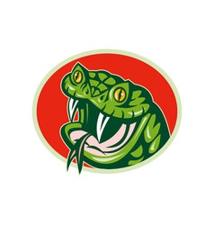 Viper snake with fangs vector