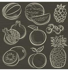 Set of fruits melon watermelon blackberry peach vector