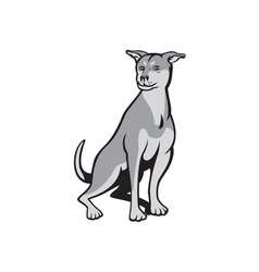 Husky shar pei cross dog sitting cartoon vector
