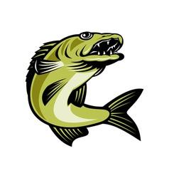 Walleye fish jumping vector