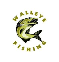 Walleye fish jumping sander vitreus vector