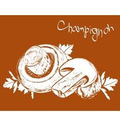 Champignons field mushrooms vector