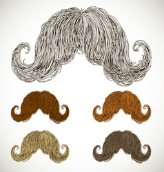 Lush mustache groomed in several colors vector
