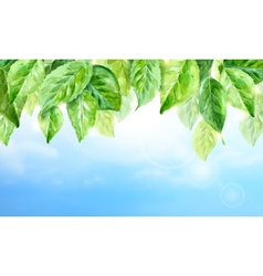 Horizontal watercolor background of spring leaves vector